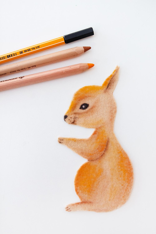 Eichhörnchen malen